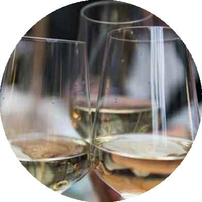 vino Bianco Vinonesto