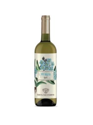 Vino Falerio Pecorino di Cocci Grifoni con sconto 35%