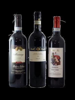 offerta vini robusti
